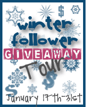 Winter Follower Giveaway Tour