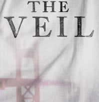 veil-bookcover