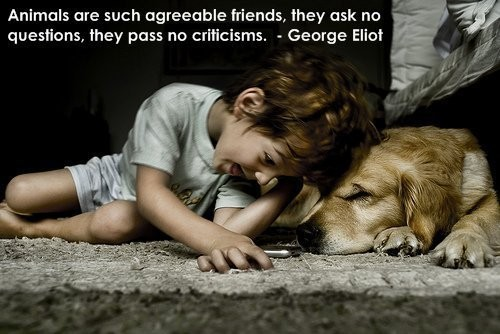 Dog Quotes - These are GREAT!