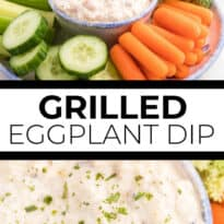Grilled Eggplant Dip Recipe - An easy and healthy appetizer perfect for parties! Eggplant is grilled to perfection and added to a creamy lemon garlic yogurt based dip. Serve with fresh veggies or crackers.