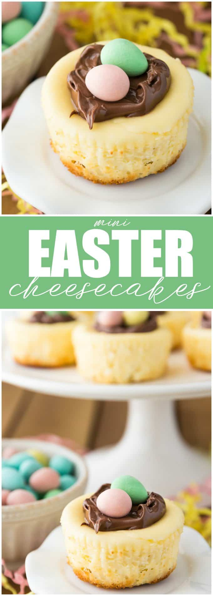 Mini Easter Cheesecakes - These individual cheesecakes are the perfect dessert to take to a potluck! Unlike a full-sized cheesecake, these mini delights don't need a water bath and are very easy to make!