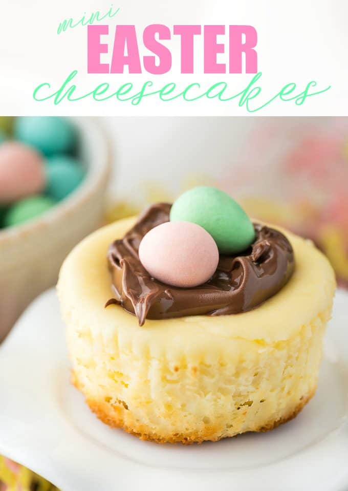 Mini Easter Cheesecakes - An easy Easter dessert to impress your guests!