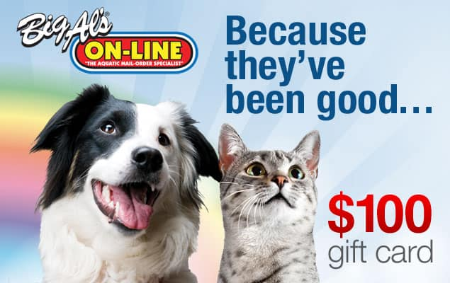 Big Al's Pets Gift Card Giveaway