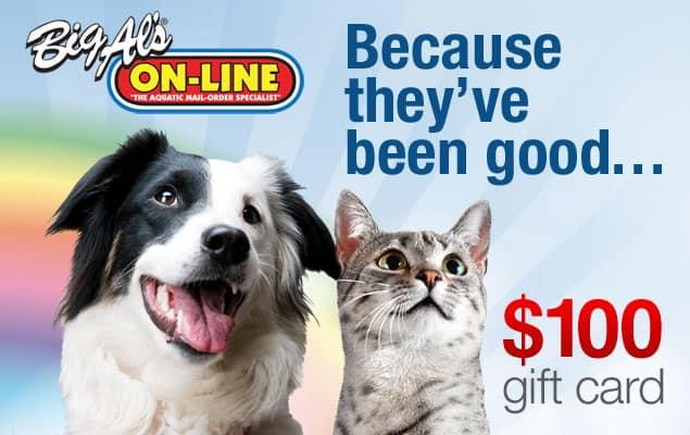 Big Al's Pets Gift Card Giveaway