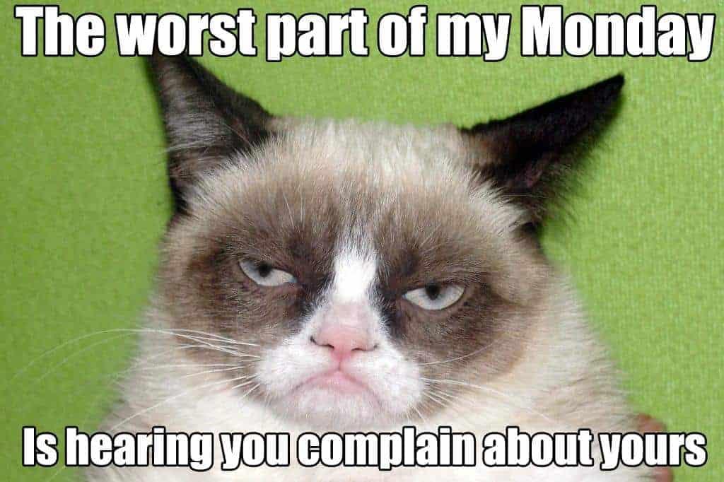 Grumpy Cat - Simply Stacie