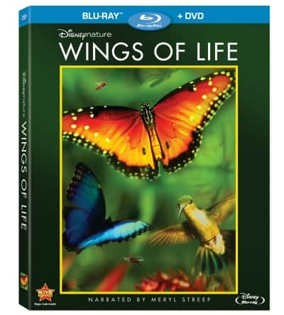 Disneynature: Wings of Life DVD + Blu-ray Review