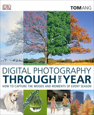 Digital Photography Throughout the Year