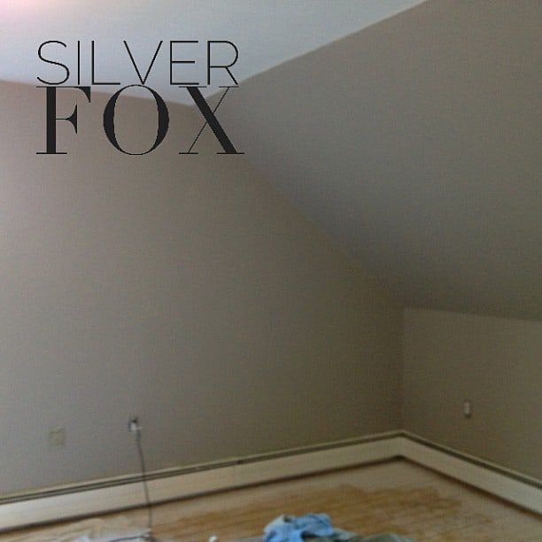 Silver Fox Paint Kitchen: The Final Look - Simply Stacie