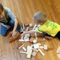 Larsen Toy Lab Review