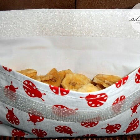 LunchSkins Reusable Bags Review