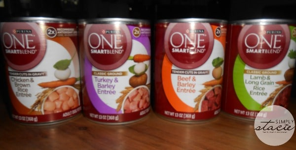 Purina One SmartBlend Wet Dog Food Review