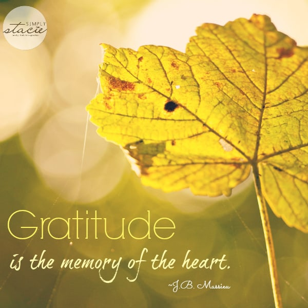 Quotes About Gratitude
