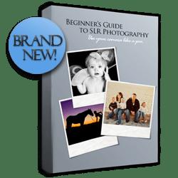 Beginner's Guide to SLR Photography