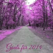 My Goals for 2014 #MomTrust
