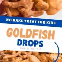 goldfish drops collage pin