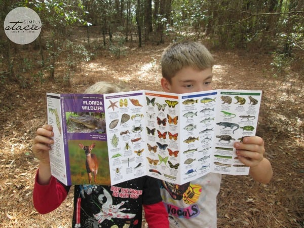 Jeff Corwin's Explorer Series Pocket Guides Review