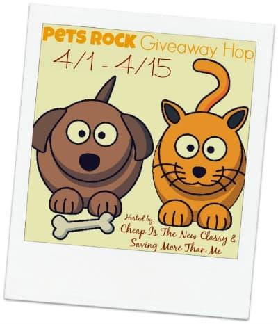 Pets Rock Giveaway #petsrock