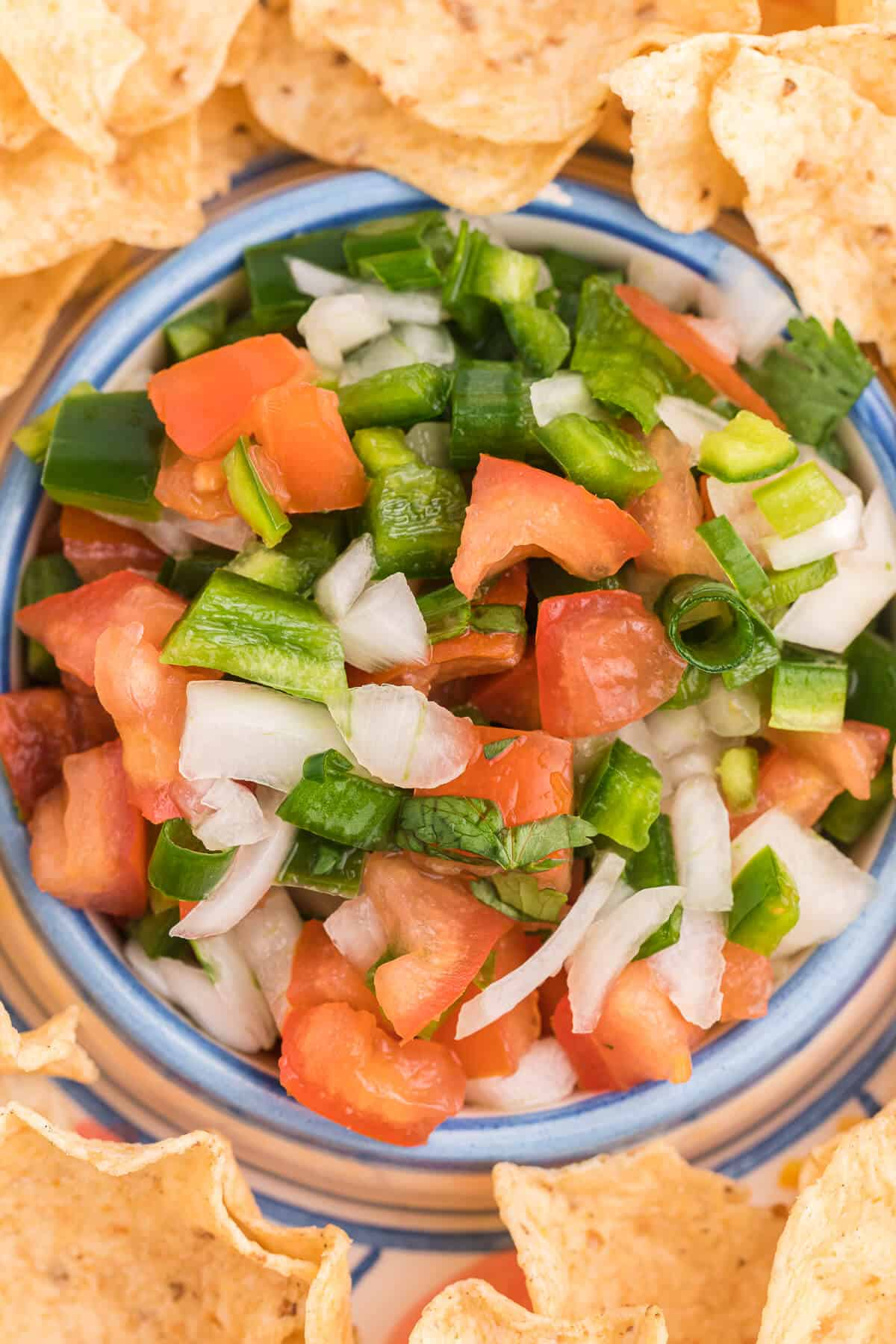 Pico de Gallo - The perfect Taco Tuesday topping! A super simple salsa recipe with tomatoes, peppers, onions, cilantro, and lime juice.