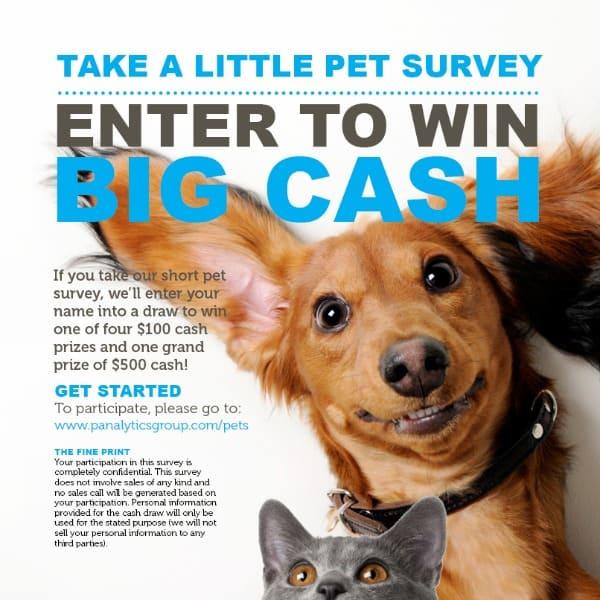 pet survey