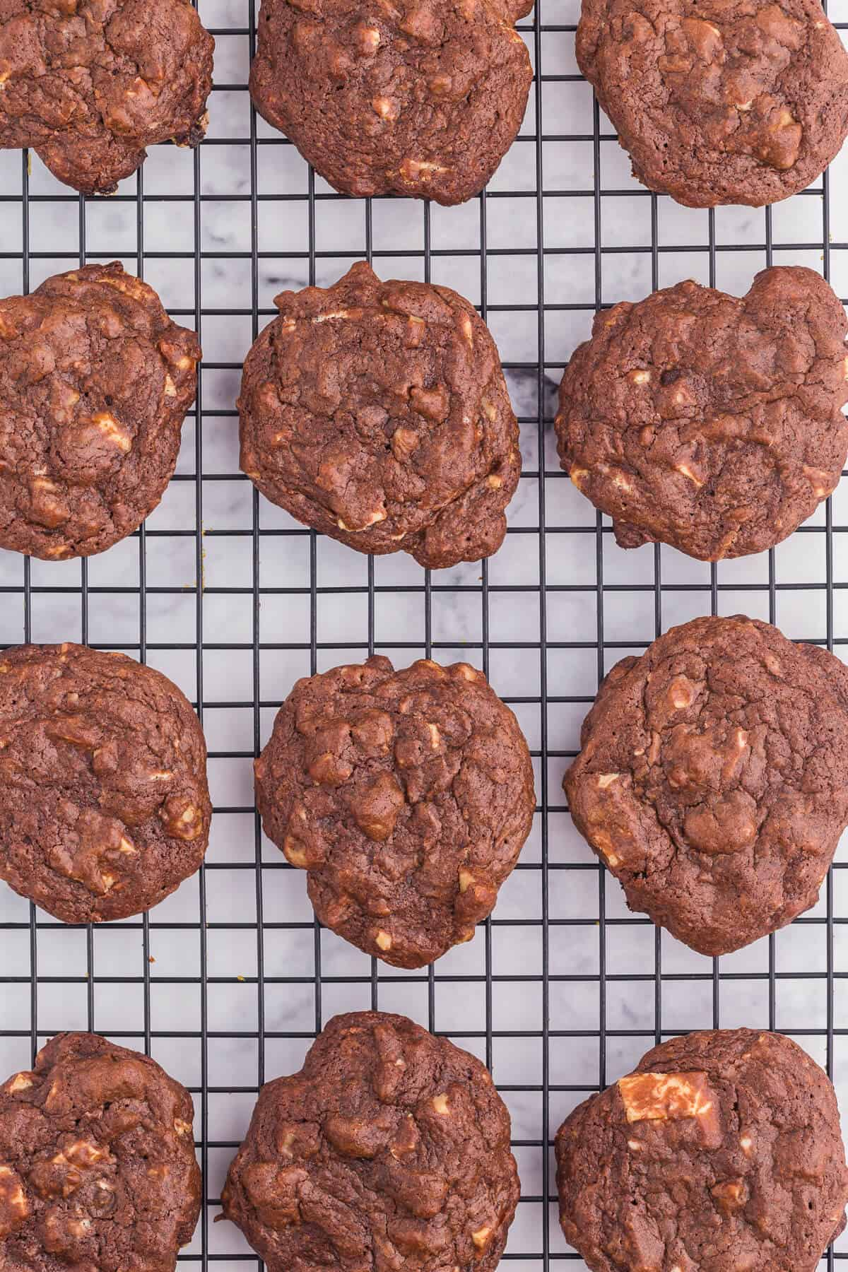 Death by Chocolate Cookies - Chocolate, chocolate and more chocolate!!!! These cookies are the definition of chocolatey goodness. A dark fudgy cookie with white chocolate and nuts are a perfect addition to your holiday baking list.