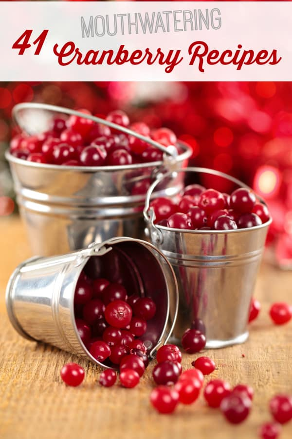 41 Mouthwatering Cranberry Recipes