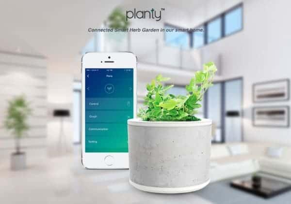 planty-2
