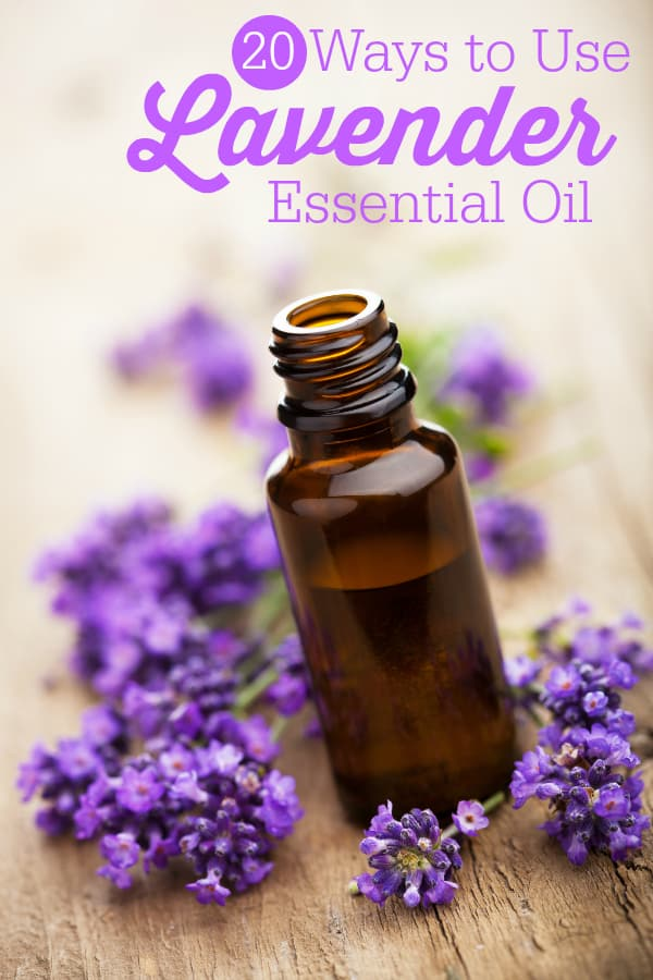 20 Ways to Use Lavender Essential Oil - so many amazing benefits! I use lavender almost every day.
