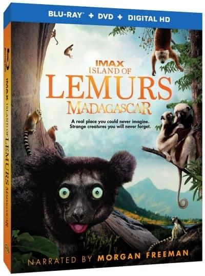 Island of Lemurs: Madagascar #IslandofLemursMadagascar