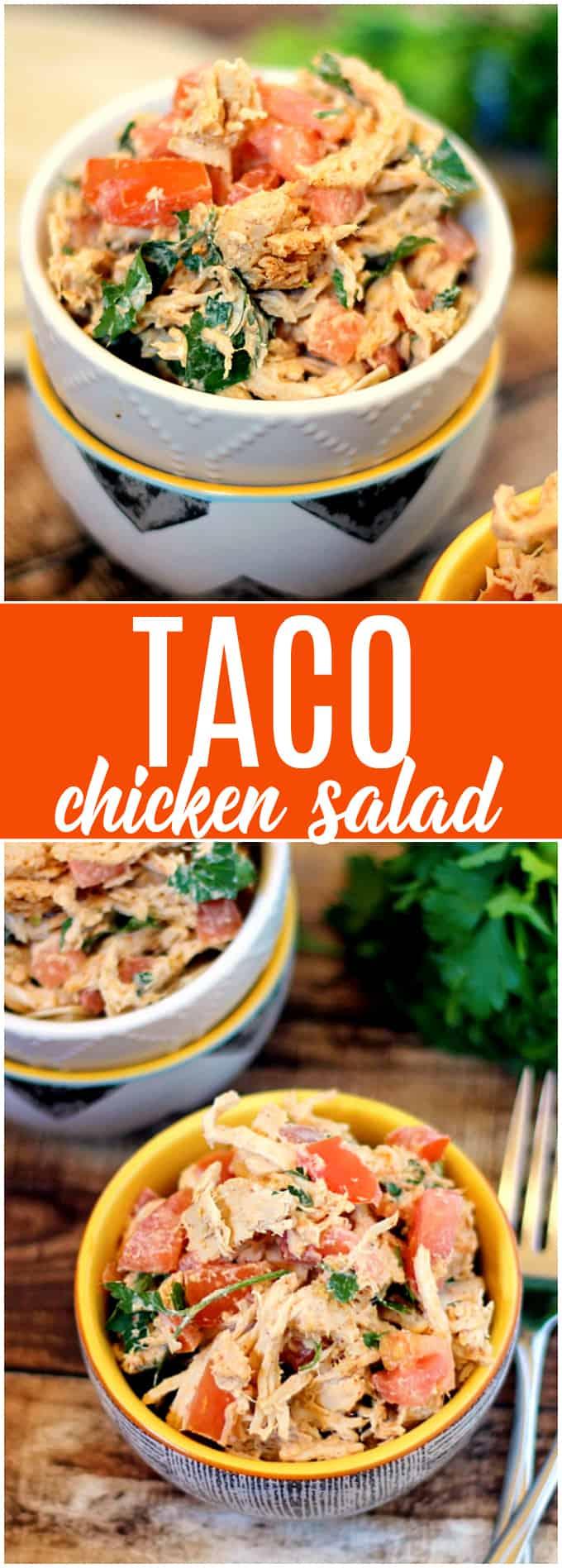 Taco Chicken Salad - This salad recipe is full of fresh (and hot!) ingredients like jalapenos, chili powder, cumin, cilantro and more.