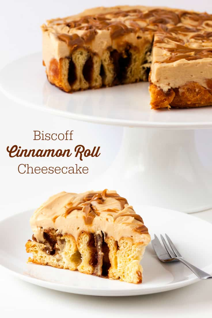 Biscoff Cinnamon Roll Cheesecake - An over-the-top dessert made with fresh cinnamon rolls and cheesecake topping swirled with Biscoff spread!