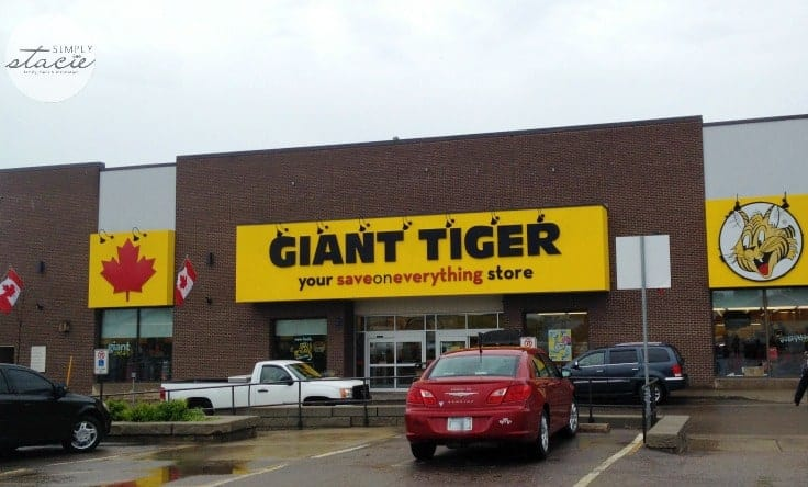 giant tiger-8