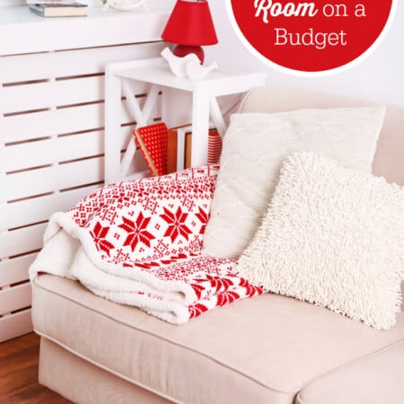 Organizing Your Living Room on a Budget