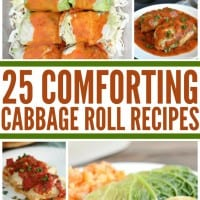 25 Comforting Cabbage Roll Recipes