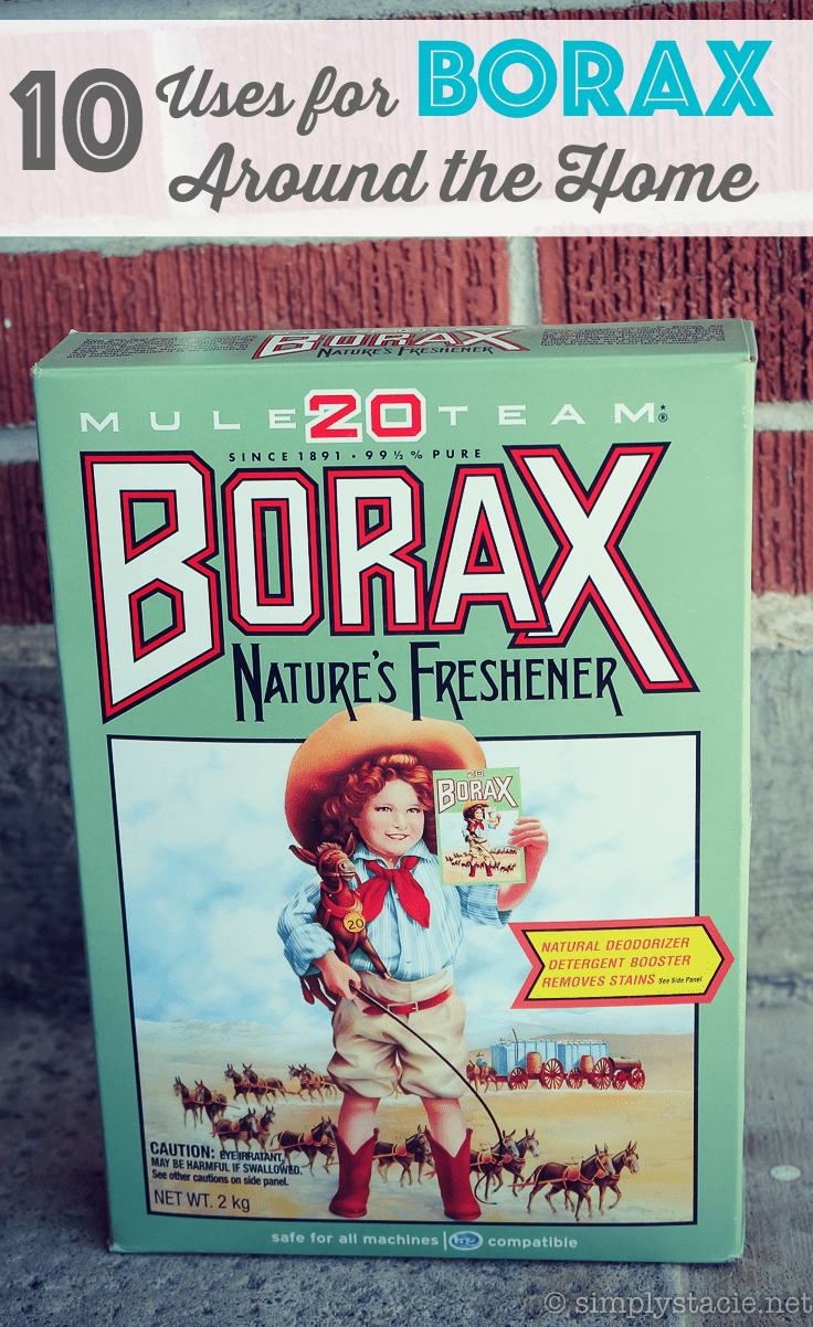 10 Uses for Borax Around the Home - Borax has been used for centuries in homes around the world. Check out these 10 uses for Borax around the home.