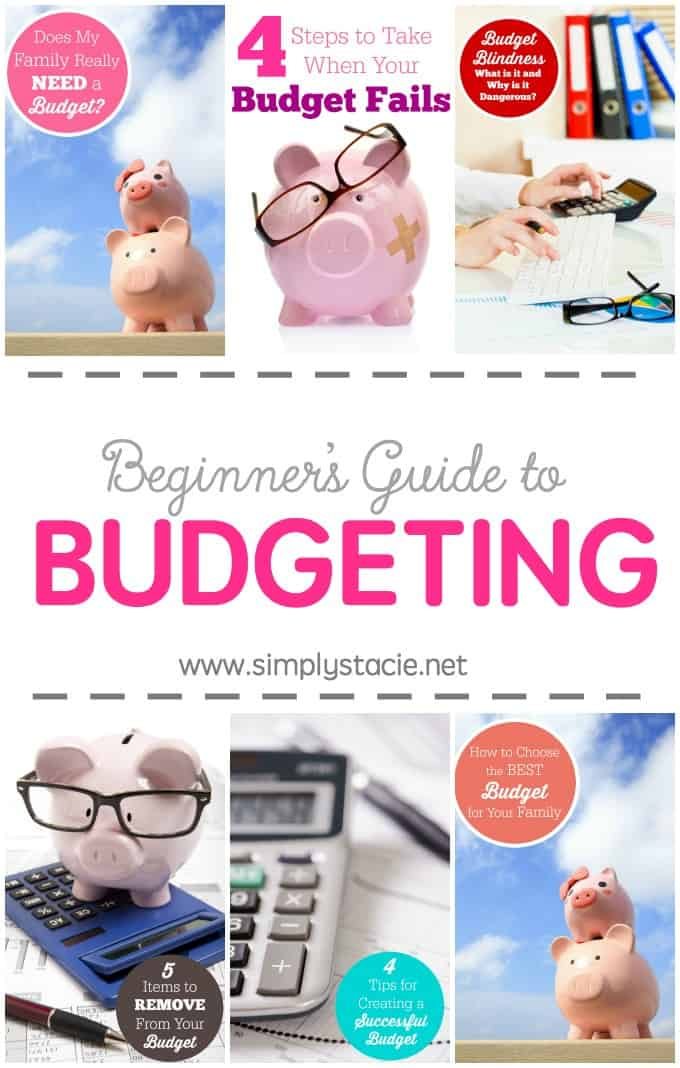Beginner's Guide to Budgeting - Having a household budget is imperative in our economy! This Beginner's Guide to Budgeting is an excellent resource to help get you started.