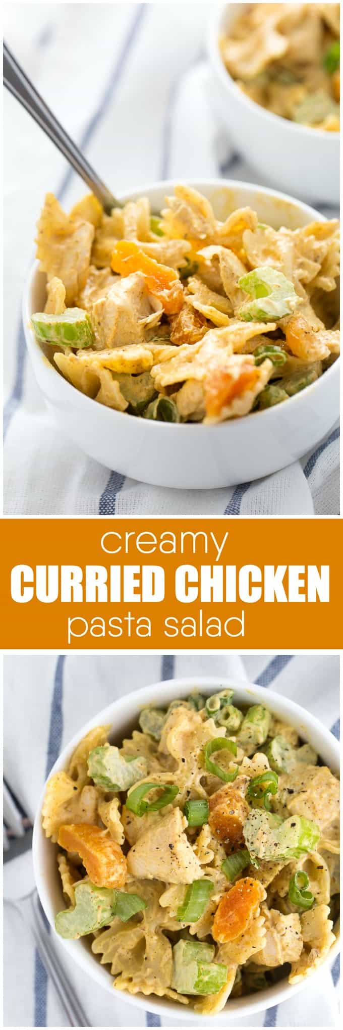 Creamy Curried Chicken Pasta Salad Recipe - Bring some spice to your next cookout. This creamy pasta salad is packed with celery and apricots and smothered in a delicious curry sauce.