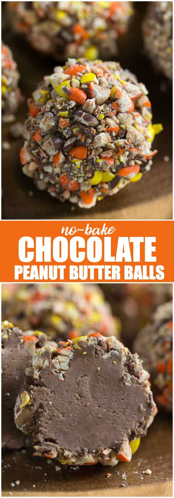 No-Bake Chocolate Peanut Butter Balls - Super easy DIY snack gift! No baking required for these delicious desserts.