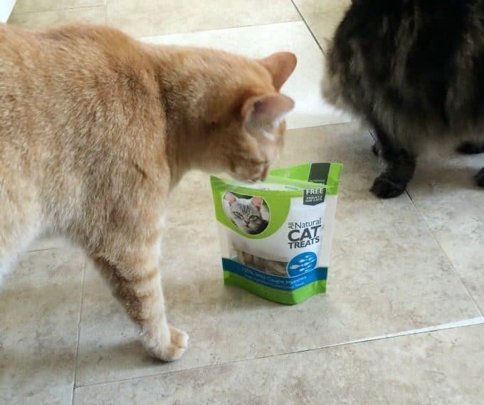 Choosing Healthier Pet Food Just Got Easier