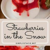 strawberries in the snow collage