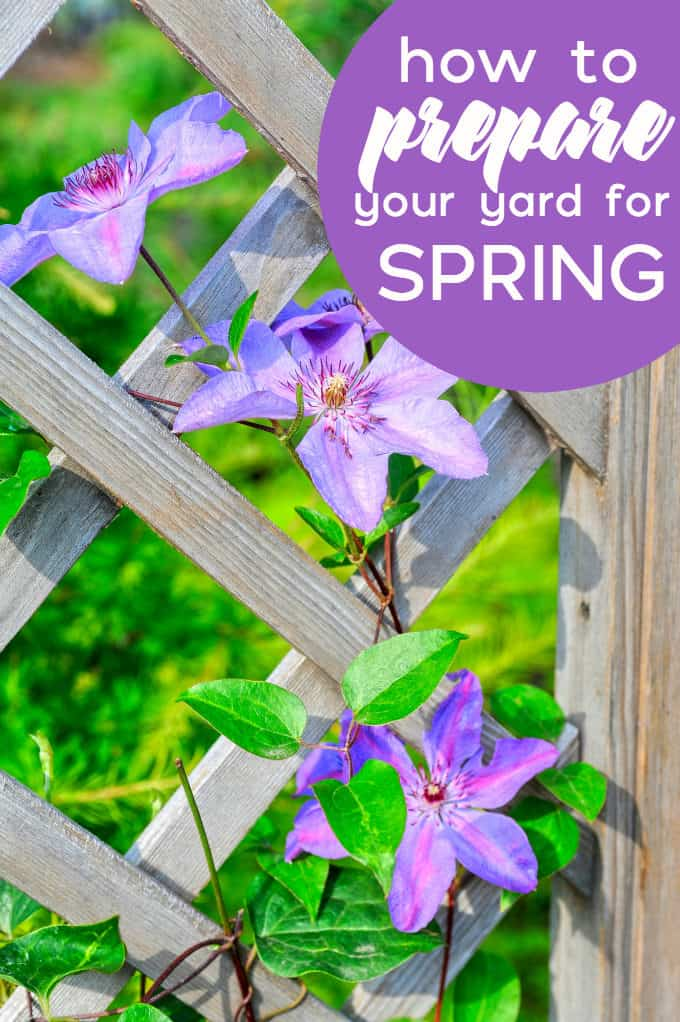 How to Prepare Your Yard for Spring - Simple tips to get your yard looking its best for the upcoming season.
