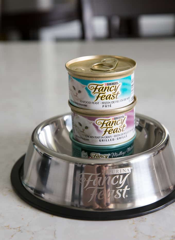 Make Your Cats Happy with Fancy Feast