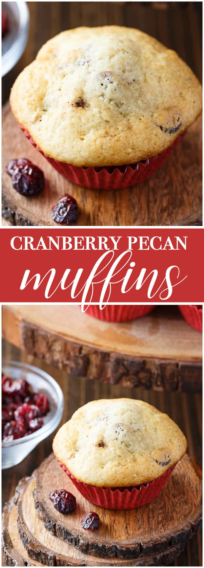 Cranberry Pecan Muffins - The best holiday breakfast! Whip these up for Thanksgiving or Christmas morning.