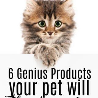 6 Genius Products Your Pet Will Thank You For