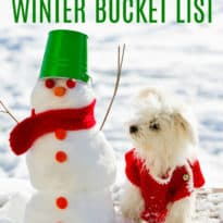 The Ultimate Winter Bucket List
