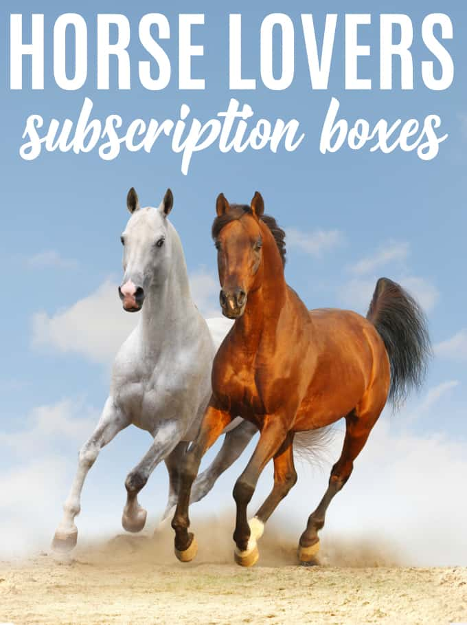 7 Horse Lovers Subscription Boxes - The perfect gift for the horse fan in your life. Get equestrian goodies and treats delivered monthly.