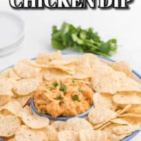 Crockpot White Chili Chicken Dip - Your favorite soup is now your go-to appetizer! This simple dip is packed with Mexican flavor from cilantro, cumin, green chiles, white beans, and taco seasoning.