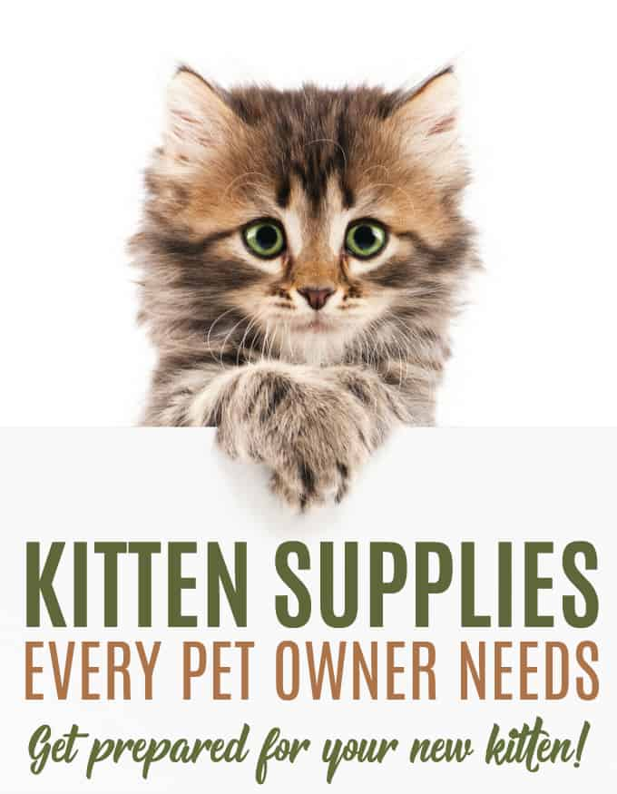 9 Kitten Supplies Every Pet Owner Needs - Get prepared with this handy checklist so your new kitten has everything he or she needs to feel right at home.