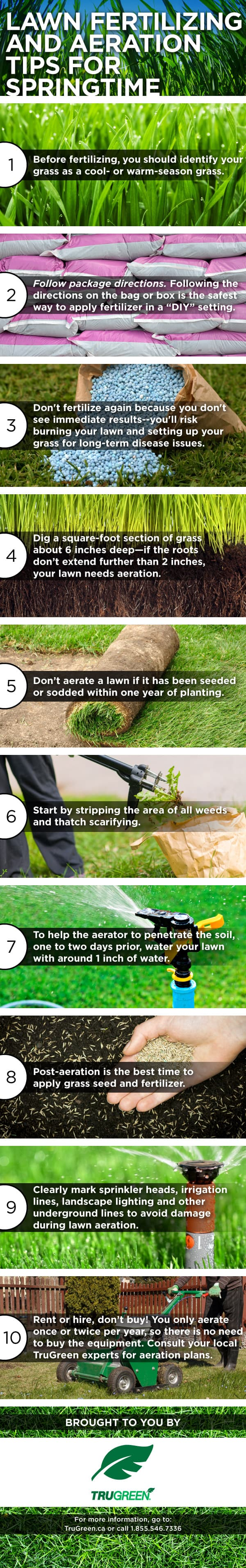 7 Spring Lawn Care Tips - Get your lawn looking its best with these simple tips.