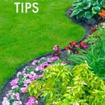 Household Tips Archives - Simply Stacie