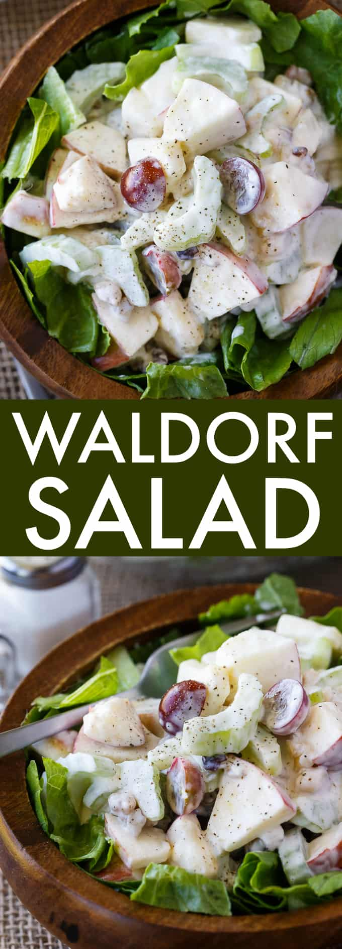 Waldorf Salad - The famous salad from the Waldorf-Astoria Hotel! It's loaded with fruit and nuts in a creamy, tangy dressing.